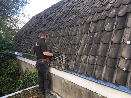 De Zinkspecialist vervangt en plaatst nieuwe zinken dakgoten.